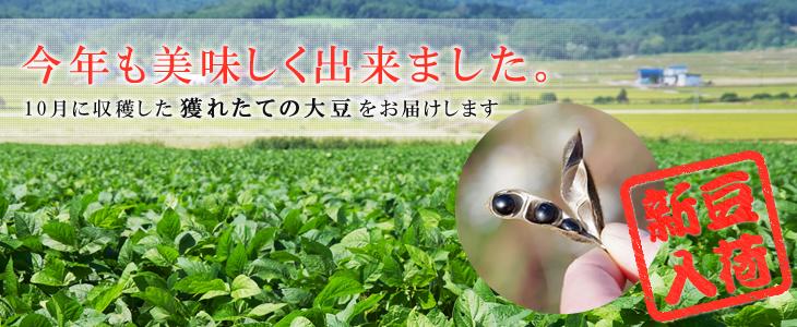 黒千石新豆