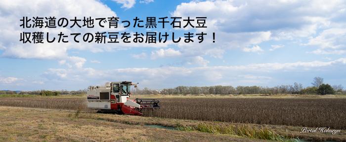 黒千石大豆収穫2017